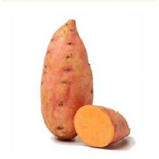 Kartupeļi saldie 2šķ ASV