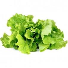 Salāti lapu gab.1šķ Igaunija