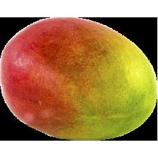 Mango Palmer 1šķ Brazīļija