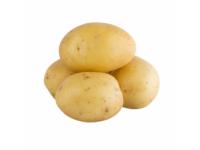 Kartupeļi fas 1.5kg Lavija