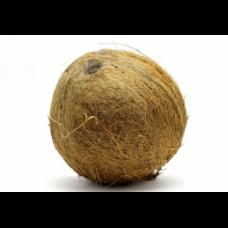 Kokosrieksts 1šķ. Kotdivuāra