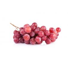 Vīnogas sarkanās Red Globe 1.šķ Čīle