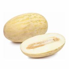 Melone Vidusāzijas 2šķ Uzbekistāna