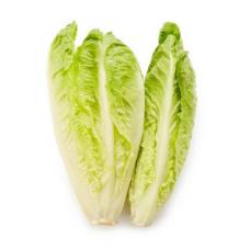 Salāti Romiešu 0.3kg Spānija